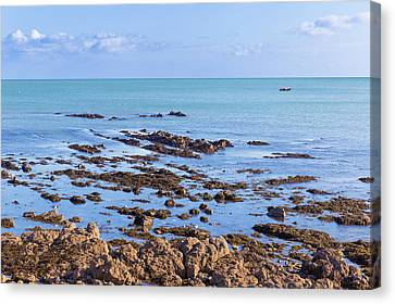 Canvas Print featuring the photograph Rocks And Seaweed And Seagulls In The Irish Sea At Howth by Semmick Photo