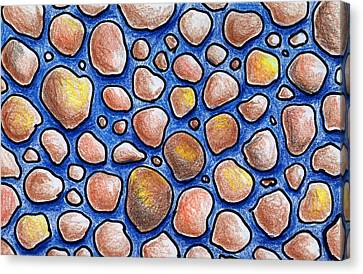Rocks And Water Abstract Canvas Print by Nancy Mueller