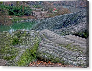 Rocks At Central Park Canvas Print by Sandy Moulder