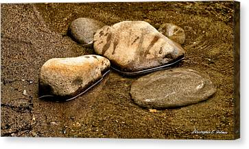 Rocks At Rest Canvas Print by Christopher Holmes