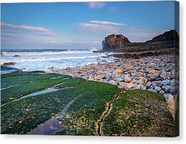 Rocks At Trow Point Canvas Print by David Head