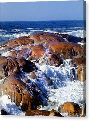 Rocks Awash Canvas Print by Frank Wilson