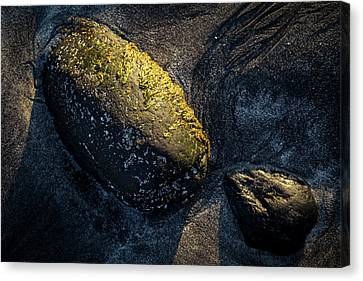 Canvas Print featuring the photograph Rocks From Talisker Beach 1 by Davorin Mance