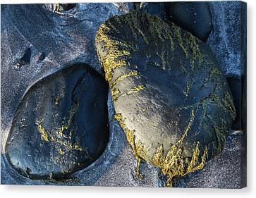Canvas Print featuring the photograph Rocks From Talisker Beach 2 by Davorin Mance