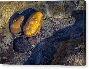 Rocks In Tidepool Canvas Print