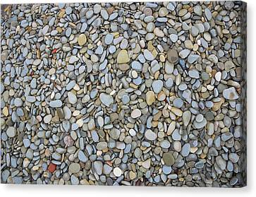 Rocky Beach 1 Canvas Print by Nicola Nobile