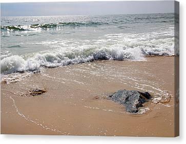 Rocky Beach Canvas Print by Brian Manfra