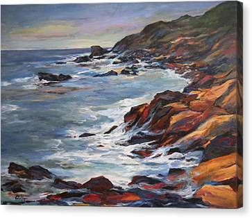 Rocky Coast Canvas Print by Pati Maguire