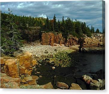 Rocky Maine Coast Canvas Print