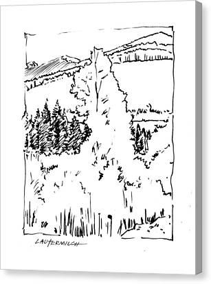 Rocky Mountain Aspens Canvas Print