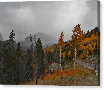 Rocky Mountain Color Canvas Print by Julie Grace