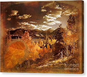 Rocky Mountain Gold 2015 Canvas Print