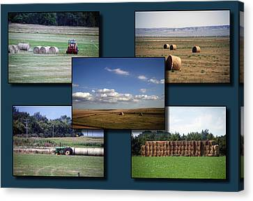 Rocky Mountain Hay Rolls Collage 02 Canvas Print by Thomas Woolworth