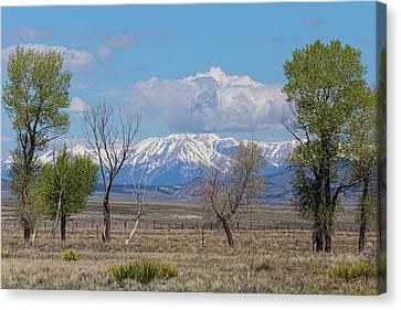 Rocky Mountain Landscape Canvas Print by James BO Insogna
