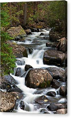 Rocky Mountain National Park Cascade  Canvas Print by The Forests Edge Photography - Diane Sandoval