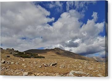 Rocky Mountain Tundra Canvas Print by Julie Grace