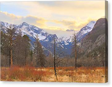 Rocky Mountain Wilderness Sunset View Canvas Print by James BO Insogna