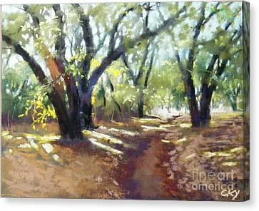 Rocky Oak Park Canvas Print