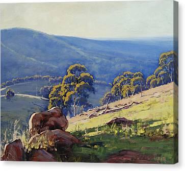 Gum Trees Canvas Print - Rocky Outcrop Near Bathurst by Graham Gercken