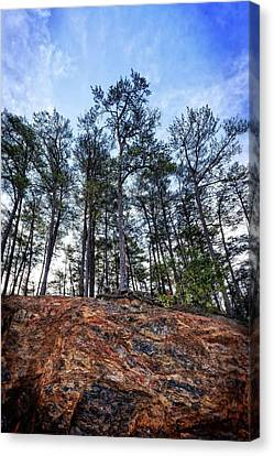 Canvas Print featuring the photograph Rocky Pines by Alan Raasch