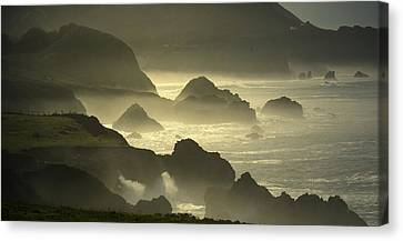 Rocky Point Big Sur On A Foggy Day Canvas Print by Joyce Dickens