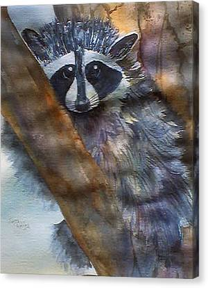 Rocky Racoon Canvas Print by Jerry Kelley