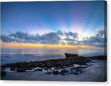 Canvas Print featuring the photograph Rocky Reef At Low Tide by Debra and Dave Vanderlaan