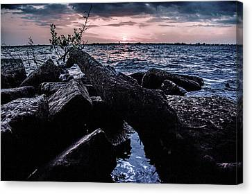 Rocky Shore Canvas Print by Michael Frizzell