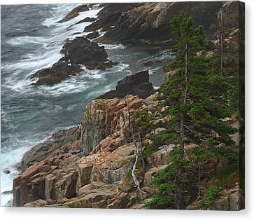 Rocky Shoreline Of Acadia National Park Canvas Print by Juergen Roth