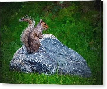 Rocky The Squirrel - Paint Fx Canvas Print by Brian Wallace