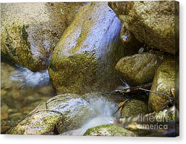 Rocky Water Closeup 2 Canvas Print