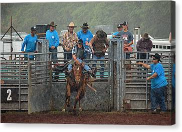 Canvas Print featuring the photograph Rodeo Bronco by Lori Seaman
