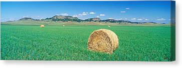 Rolled Hay Bale In Field With Hills Canvas Print by Panoramic Images