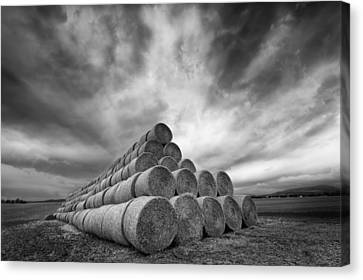Rollers Canvas Print by Piotr Krol (bax)