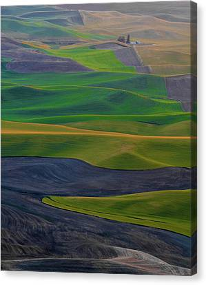 Rolling Fields Of The Palouse Canvas Print by James Hammond