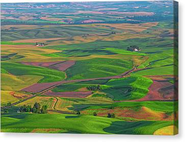 Rolling Green Hills Of The Palouse Canvas Print by James Hammond