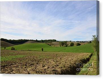 Rolling Hills And Tilled Fields In Italy Canvas Print