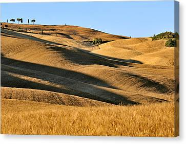Rolling Hills Of Tuscany Canvas Print by Juergen Feuerer