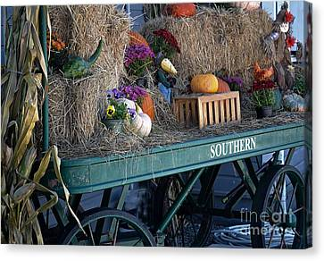 Rolling Into Fall Canvas Print