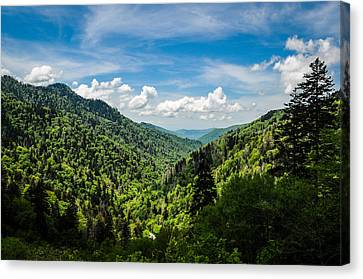 Rolling Mountains Canvas Print