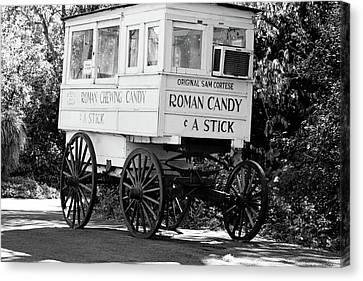 South Louisiana Canvas Print - Roman Candy - Bw by Scott Pellegrin