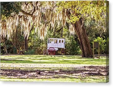 Canvas Print - Roman Candy Cart Under The Oaks by Scott Pellegrin