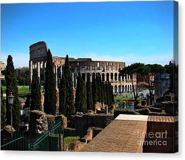 Roman Colosseum V Canvas Print by Al Bourassa