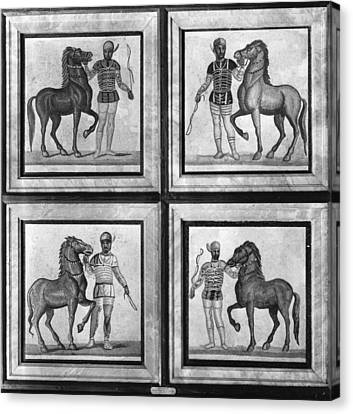 Roman Mosaic: Charioteers Canvas Print by Granger