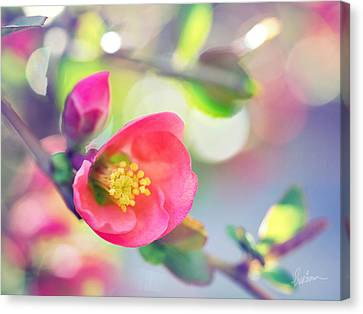 Canvas Print featuring the photograph Romancing Spring I by Kharisma Sommers