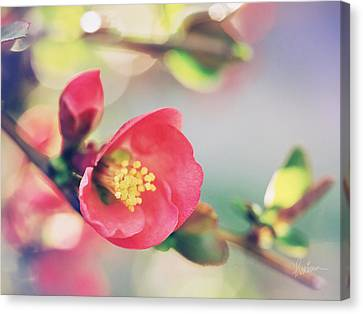 Canvas Print featuring the photograph Romancing Spring II by Kharisma Sommers