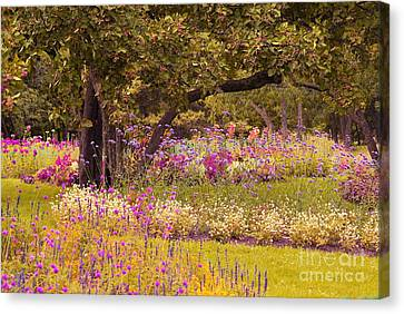 Canvas Print featuring the photograph Romanesquerie by Aimelle