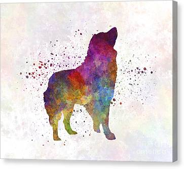 Romanian Carpathian Shepherd Dog In Watercolor Canvas Print by Pablo Romero
