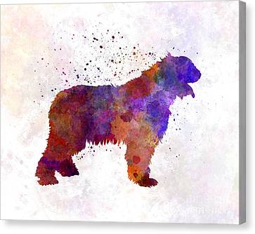 Romanian Mioritic Shepherd Dog In Watercolor Canvas Print by Pablo Romero
