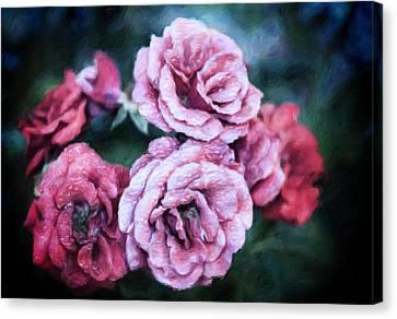 Romantic Night Roses Canvas Print by Georgiana Romanovna